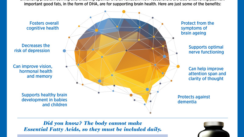 Why Whole Body Health Begins with the Brain